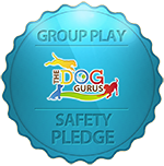 Safety-Pledge-orange-crop